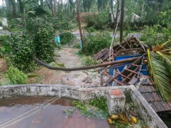 Dead As Cyclone Gaja Pounds Coastal Tamil Nadu Will Be Given Ex Gratia By Govt