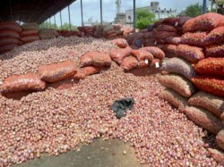 Onion Price Hits Rock Bottom Sells At Re 1 Per Kg Karnataka