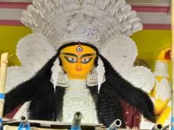 Priest From Krishnanagar Died During Jagadhatri Puja Arati