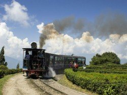 Tourist Footfall The Darjeeling Hills Creates Record This Year Puja