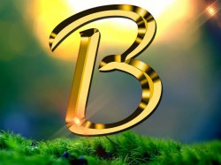 Numerology Name Start With B Know The Personality