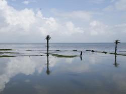 Heavy Rainfall Cyclone Phethai May Hit Andhra Pradesh Next Two Days