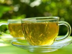 Cm Biplab Deb Unveils Logo Tripura Tea Bid Tap Bangladesh Markets