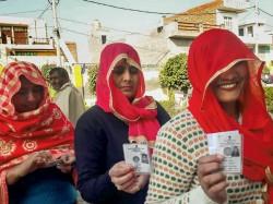 Jind Bypoll Is The Semi Final Lok Sabha State Election Haryana