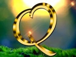 Numerology Name Start With Q Know The Personality