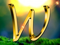 Numerology Name Start With W Personality
