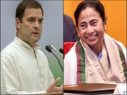 Congress President Rahul Gandhi Writes Letter Mamata Banerjee