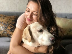 Actress Mimi Chakraborty Gets Furious Over 16 Dogs Death Kolkata