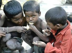 Research Report Shows Tribal Peoples Have Food Scarcity West Bengal