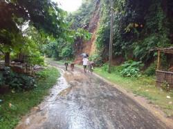 Tribals Suffering Tripura Alleged Inpt