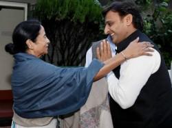 Akhilesh Yadav S Samajwadi Party Followed Mamata S Path Protested Against Bjp