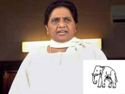 Mayawati Faces Big Trouble Sc Due Statue Elephant Park
