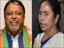 Mamata Banerjee Mukul Roy Here How Politicians Are Wishing On Saraswati Puja