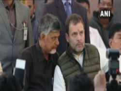 Rahul Gandhi Manmohan Singh Met Chandrababu At His Dharna Manch Delhi