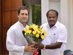 Lok Sabha Elections 2019 Jds Returns Bangalore North Seat Ally Congress