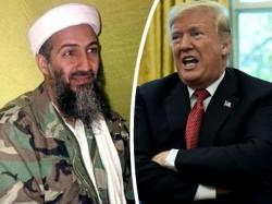 Us Offers Reward Osama S Son Hamza Bin Laden