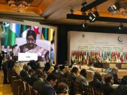 Sushma Swaraj Attacks Pakistan On Oic Conclave On Terrorism Issue
