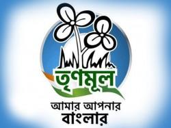 Trinamool Congress Has Published New Logo Party Before Lok Sabha Election