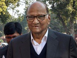 Ncp Chief Sharad Pawar Not Contest Lok Sabha Elections