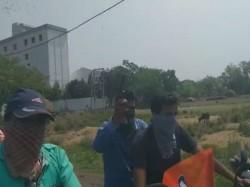 Tmc Worker Brandishing A Gun In Birbhum Video Goes Viral