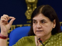 Maneka Gandhi Drops Another Bomb Says Those Who Vote For Me Will Get Work