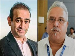 Bizmen Including Mallya Nirav Fled India In Recent Past Says Ed