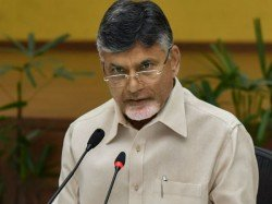 Andhra Pradesh Poll Update Cm Naidu Demands Repolling In Some Booths