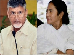 Chandrababu Naidu Assures Mamata Banerjee That Exit Polls Will Not Convert In Result