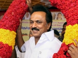 Dmk Gets Great Victory In Tamilnadu In Lok Sabha Election