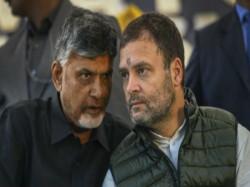 Andhra Pradesh Cm Chandrababu Naidu Meets Cong President Rahul Gandhi At His Residence