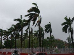 Cyclone Claims 14 Lives In Bangladesh And 63 Injured