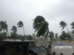 What To Do And Not To Do Before And After Cyclone Fani Know In Details
