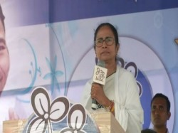 Mamata Banerjee To Unveil Vidyasagar Statue At College Street