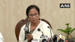 Cm Mamata Criticised Intellectuals Steps On Junior Doctors