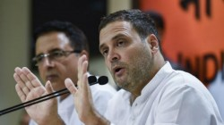 Congress Leaders Resign From Their Post In Support Of Rahul Gandhi