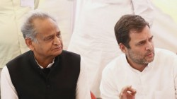 Congress Chief Rahul Gandhi Has Shot Down Veteran Party Leader Ashok Gehlot S Request