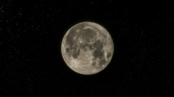 Super Black Moon 2019 Know Its Effect On Zodiac Signs Based On Astrology