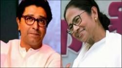 Raj Thackeray To Meet Mamata Banerjee On Evm Issue