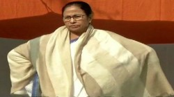 Mamata Banerjee Talks About Kolkata S Elliot Park And Snake Attack