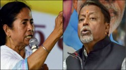 Mukul Roy Claimed Mamata Banerjee Asked For Support So Dola Sen Got Bjp S Vote