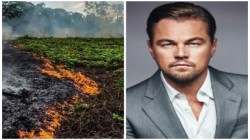 Amazon Fire Leonardo Di Caprio S Earth Alliance Fund To Don