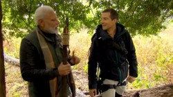 Narendra Modi Show Broadcasts In Man Versus Wild Show With Host Bear Grylls