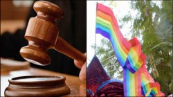 Gay Lawyer Presents Himself As A President Candidate In Tunisia