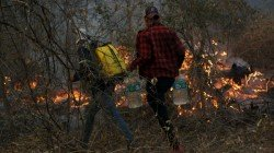 G7 Summit Are Reportedly Nearing An Agreement To Help Fight Fires In The Amazon Rainforest