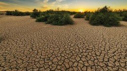 Ipcc Report On Climate Change Climate Change Will Cost Planet And Human Heavily