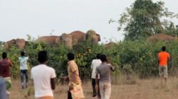 Elephant Killed Woman In Jhargram