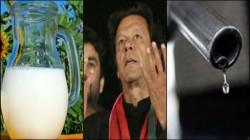 Milk Is Getting Costlier Than Petrol In Pakistan
