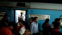 Cocroach In Shatabdi Express Found In Maldah