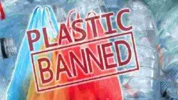 Central Primarily Decides To Ban The Cigarette Butts Among 12 Plastic