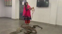 Pakistani Pop Star Threatening Prime Minister Narendra Modi With A Python